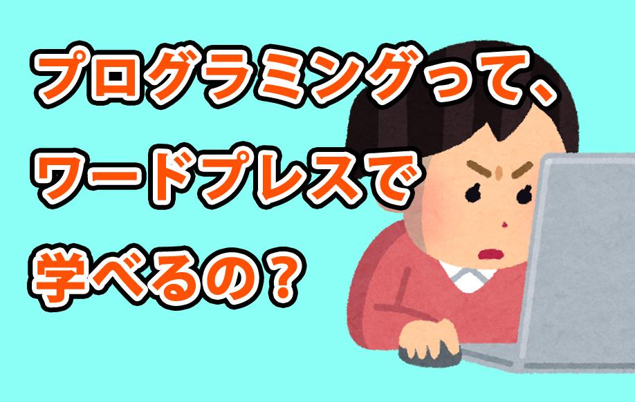 プログラミングはwordpressで学べるのか?【学べます】